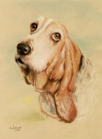 'Basset Hound - Hundeportrait handgemalt' by Marita Zacharias