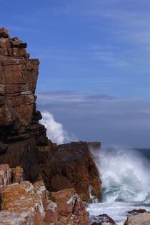 Cape of Good Hope by ysanne