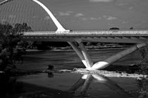 Loire-Brücke von Christian Hallweger