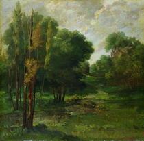 Forest Landscape von Gustave Courbet
