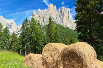 alpine pasture in Dolomites by Antonio Scarpi