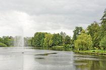 Ein grauer Tag im Park by gscheffbuch