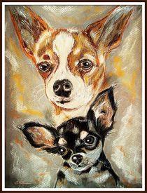 ~Chihuahua~ by Sandra Vollmann