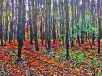 Forest in late fall by GabeZ Art