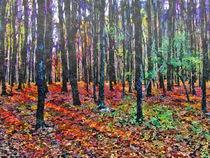 Forest in late fall von GabeZ Art