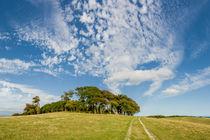 Big Sky over Chanctonbury Ring by Malc McHugh