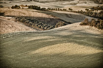Landschaft Toskana Italien / italian landscape Tuscany by Thomas Schaefer  (www.ts-fotografik.de)