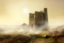 Foggy morning in western UK by Jarek Blaminsky