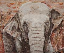 Elefanttembo1