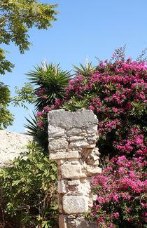 Urlaub auf der Insel Kreta in Griechenland von Marita Zacharias