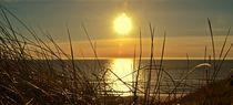 Sonnenuntergan von Ute Bauduin