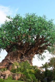 Baum des Lebens - Natursymbolik by Marita Zacharias