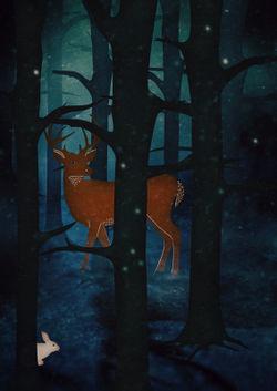 Nighttimewoods-c-sybillesterk
