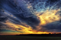 Burn Like the Sky by Vicki Field