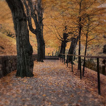 Way to Autumn by Gerhard Petermeir