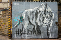 Lion gatekeeper by Ralf Ketterlinus