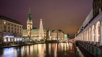 Christmas Market at City Hall Hamburg by Daniel Heine
