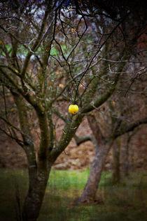 Apple of temptation von Leopold Brix