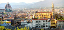 Florence panoramic view, Firenze, Tuscany, Italy by tanialerro