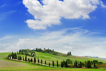 tuscany landscape panoramic view with hills and cypresses, toscana, italy by tanialerro