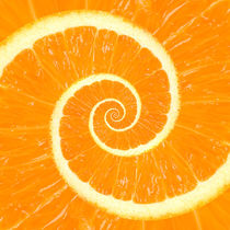 Spiral Citrus Orange Droste  by Kitty Bitty
