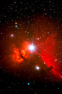 """Pferdekopfnebel-Region - B 33 - Horsehead Nebula Region"" by monarch"