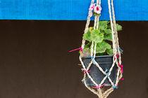 14-hanged-flower-vase