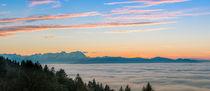 Bodensee im Nebel von Thomas Keller