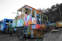 Graffiti Train by Susanne  Mauz