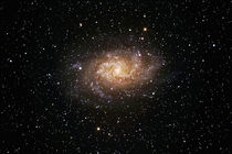 Dreiecksgalaxie - Messier 33 - triangulum galaxy by monarch