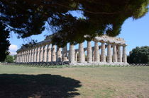 Greco Roman Temple At Paestum von Malcolm Snook