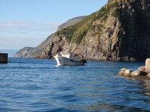 Italian Fishing Port von Malcolm Snook