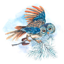 Watercolor Illustration with owl von Varvara Kurakina