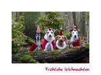 Fröhliche Weihnachten by Susanne Schröder
