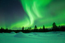Aurora borealis over snowy landscape winter, Finnish Lapland by Sara Winter