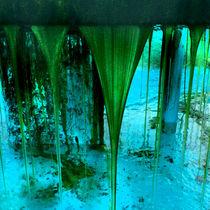 Water-embargo