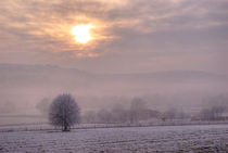South Downs Hoar Frost by Malc McHugh