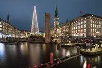 Hamburg Rathaus Weihnachtsmarkt mit Alsterarkaden III von elbvue