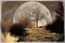 Mysticalmoorlandscape2