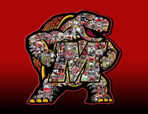 University of Maryland Terrapins Football Art Print by Fairchild Art Studios