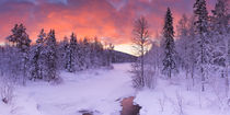 Sunrise over a river in winter near Levi, Finnish Lapland von Sara Winter