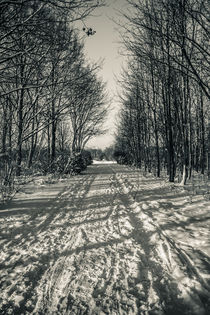 Winter way I by Roland Hemmpel