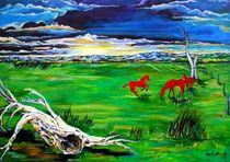 Pferde auf der Weide by Eberhard Schmidt-Dranske