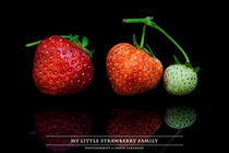 My little Strawberry Family by Erwin Lorenzen
