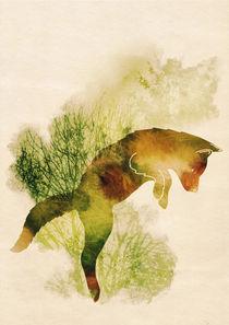 Spring Fox von Sybille Sterk