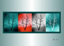 Jahreszeiten von Stephanie Kirchner