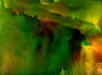 Brasilianische Wald von Bill Covington