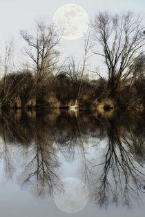 'Still rest of the lake' von Chris Berger