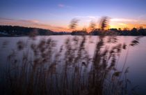Windiges Ufer by Katja Bartz