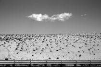 In der Wüste by Bastian  Kienitz